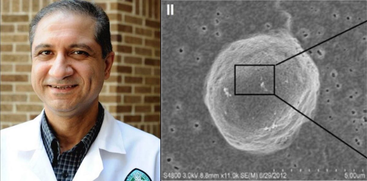 Dr. Reza Izadpanah breast cancer research Tulane University released scaled - Descoberto como desativar gene que faz com que câncer de mama desenvolva
