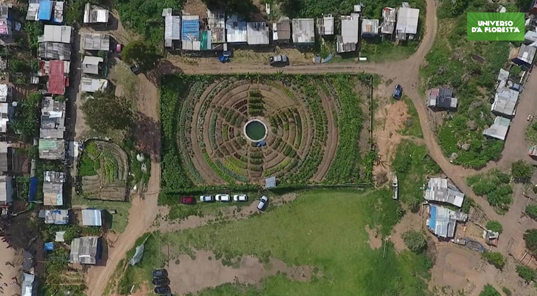 2020 07 07 5 - Campo de futebol vira horta orgânica para alimentar mais de mil famílias