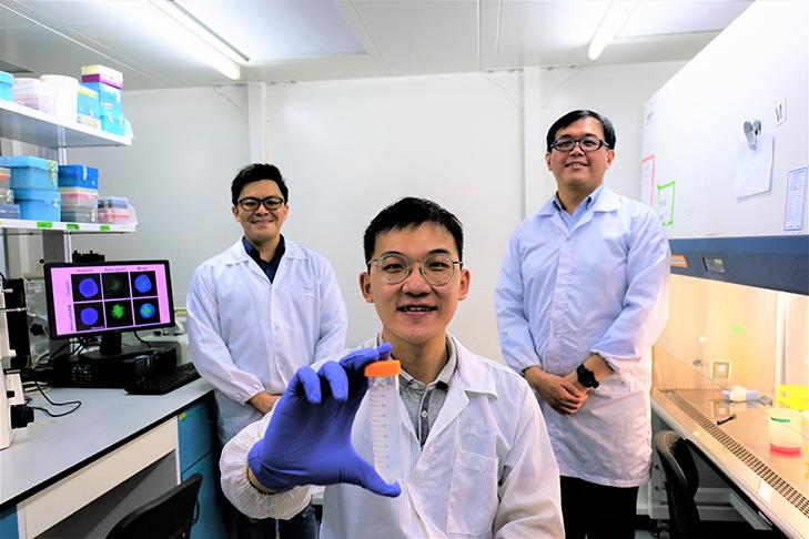 web banner Nano pPAAM 1 - Cientistas desenvolvem 'Cavalo de Tróia' que mata células cancerosas sem o uso de drogas