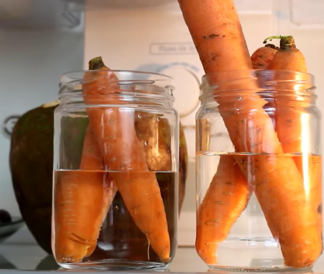httpswww.youtube.comwatchviUicJ46gZWA - Truques simples para fazer com que os alimentos durem mais tempo