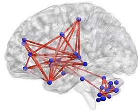 experimento mostra o que esta nos tornando mais gordos menos saudaveis e ate mesmo mudando nossos cerebros 2 - Experimento mostra o que está nos tornando mais gordos, menos saudáveis e mudando nossos cérebros